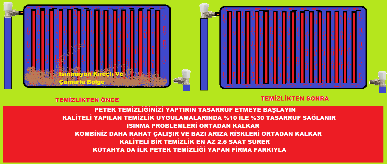 PETEK-TEMİZ